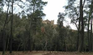 castell de Palagret-1